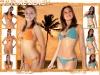 calogueculturebeach2007_page_06